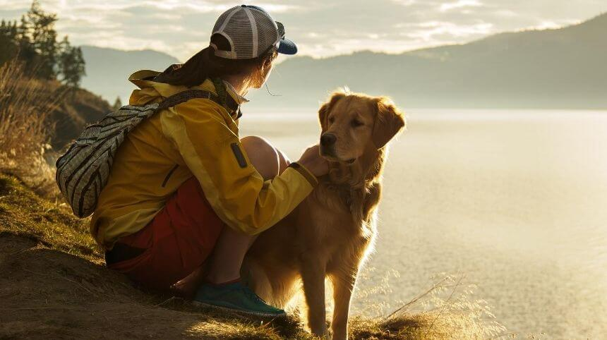 How to Choose the Best Dog Breeds for Hiking off Leash