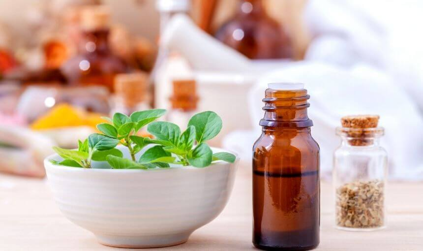 Is Oregano Oil Safe for Dogs? | Important Tips to Use Oregano Oil
